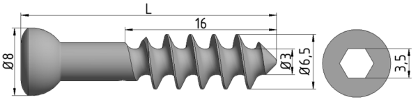 Wkręt do kości gąbczastej Ø6,5/3,0mm B=16mm